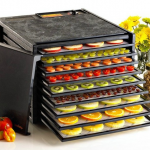 Deshidratoare fructe si legume