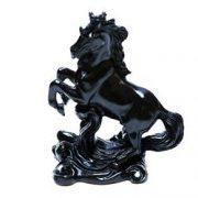 Calul succesului negru