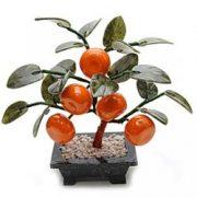 Copacel norocos cu mandarine