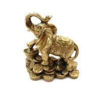 Elefant cu pepita si monede
