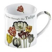 Cana Tip Toe Tulips Loose Kew Royal Botanic | Creative Tops