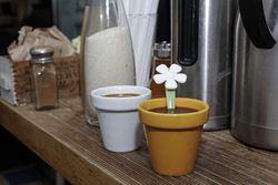 Set 2 cesti espresso cu lingurite - Flower Pot | Kikkerland