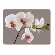 Suport masa - Orchid Harmony | Creative Tops